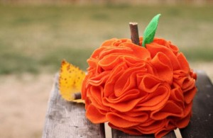 Pumpkin_craft_ (7)