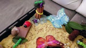 butterfly_sensory_box