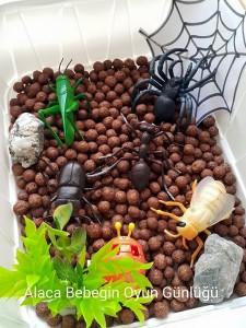 insect_sensory_bin