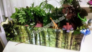rainforest_animals_sensory_box