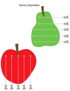 hungry_caterpillar_cutting