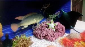 ocean_habitat_diorama
