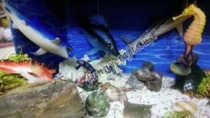 preschool_ocean_theme_activities