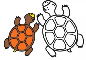 animals coloring pages turtle