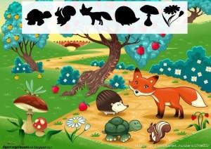 animals shadow matching