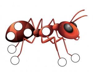 ant do a dot