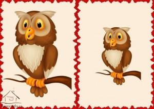 big and small owl