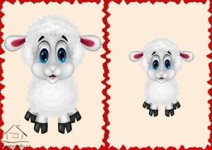 big and small sheep