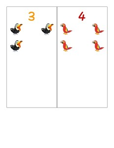 birds number cards activities