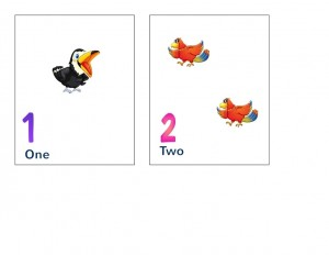 birds number cards activity