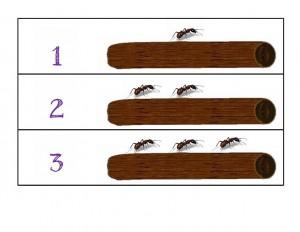 bugs activities ants
