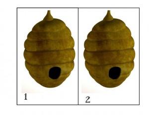 bugs activities bee numbers