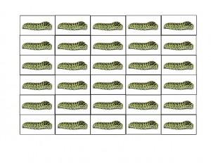 bugs activities caterpillar