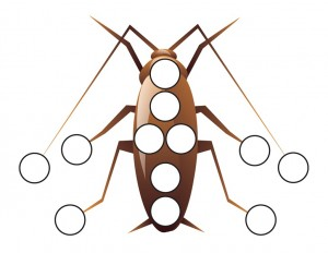 bugs activitiy