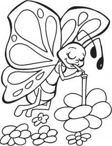 butterfly coloring for children (2)