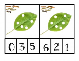 caterpillar number activity