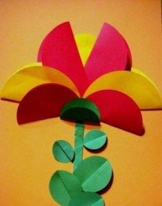 circle paper palm