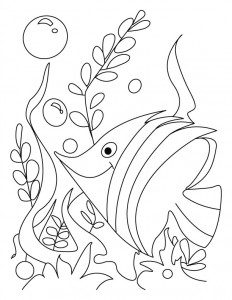 coloring pages fısh at home