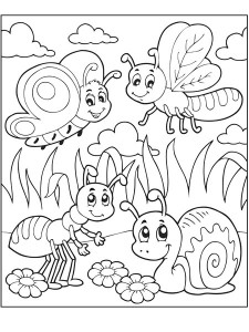 coloring pages snail