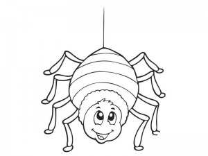 coloring pages spider