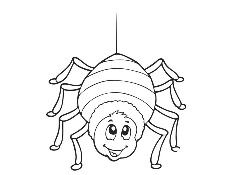 coloring pages spider funnycrafts