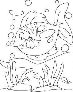 cool coloring pages fısh