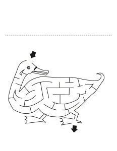 duck labyrinth