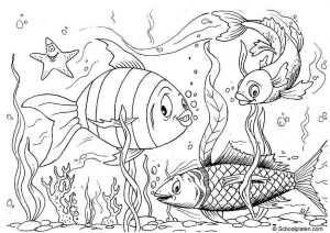 fısh coloring pages pictures