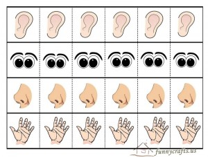 five senses teaching theme activities