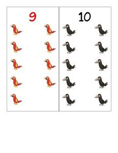 number birds cards