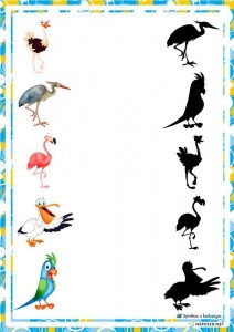 preschool activities shadow birds