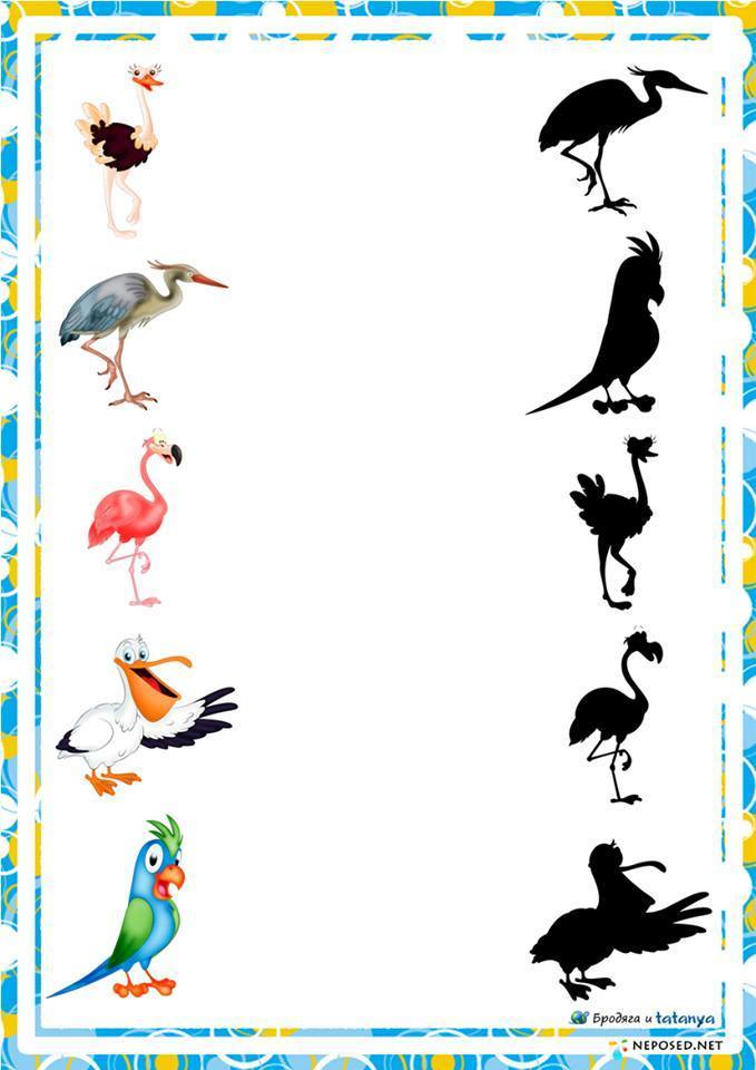 Learning About Birds: 7 Activities for Young Children ...