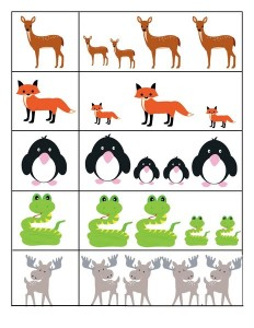 preschool animals  for kıds
