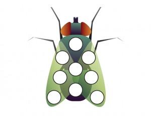 preschool bugs learning