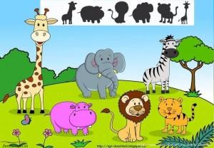 shadow matching animals