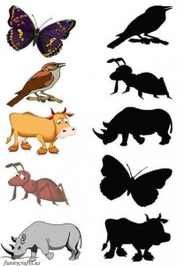 shadow matching forest animals