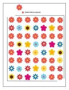 spring maze color flowers