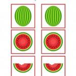 Watermelon Worksheets for Preschool