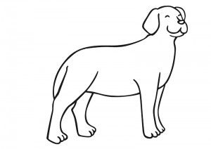 zoo coloring pages dog
