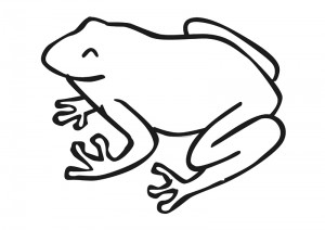 zoo coloring pages frog