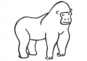 zoo coloring pages gorilla