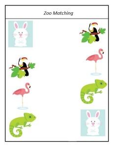 zoo matching activities