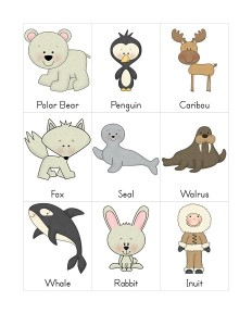 arctic animals word