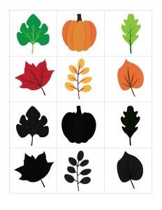 autumn theme shadow