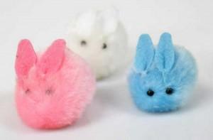 bunny craftsfunny