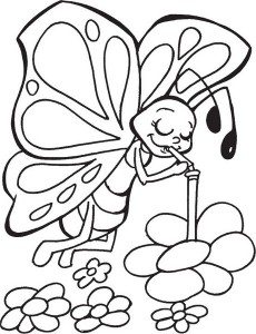butterfly coloring pages (15)