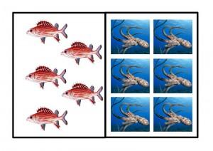 cool ocean animals number