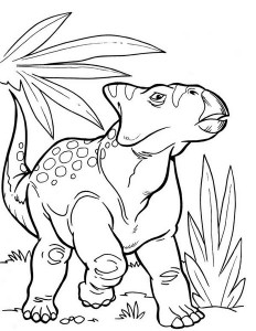 dinosaur coloring pages activities (13)
