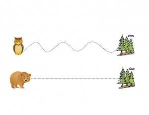 forest animals line (2)
