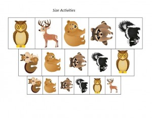 forest animals size  activity